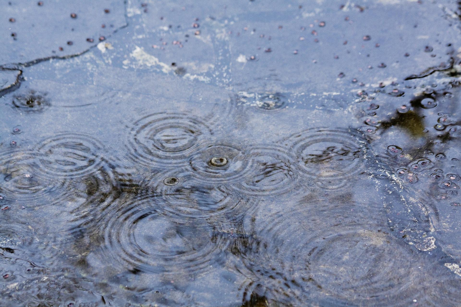 もう雨なんかこわくない! 防水を知る