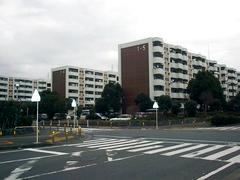 市営金沢第2住宅 大規模修繕工事